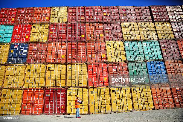 Commercial docks worker examining containers