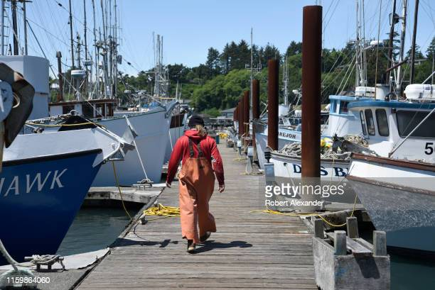 A commercial fisherman walks along the dock toward his boat at a marina in Newport Oregon