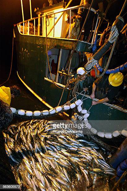 Commercial fishermen on board of fishing vessel Endurance operating off of San Pedro In the darkness they use electronic equipment and their vision...