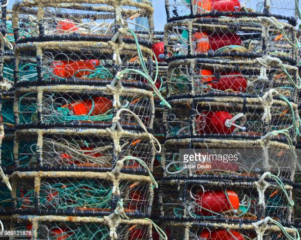commercial fishing gear - crab pot stock photos and pictures