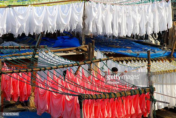 Commercial laundry The openair laundry district performs most of the city's commercial washing Dhobi Ghat Mumbai Maharashtra India