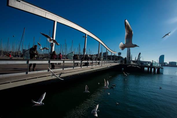 Commercial port of Barcelona (Moll de la Fusta)