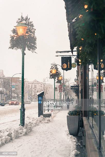 Commercial street under a snowfall, Montreal, Quebec, Canada, vertical.