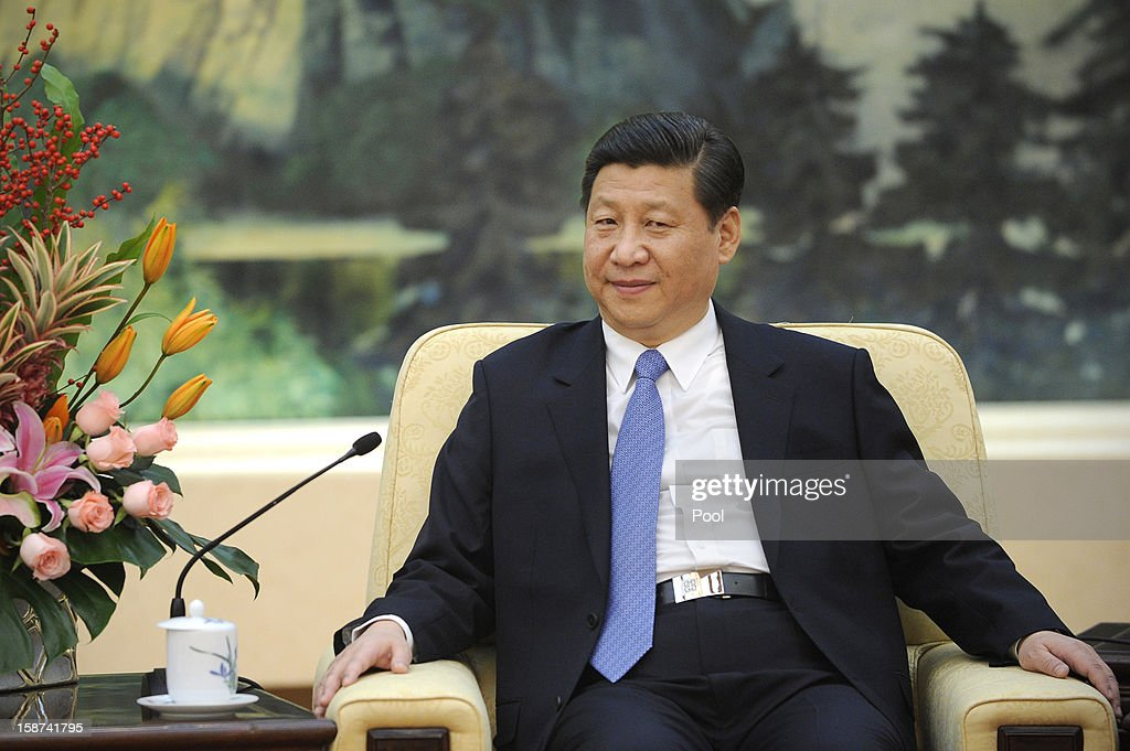 Communist Party leader Xi Jinping meets with Vuk Jeremic, president of the 67th Session of the UN General Assembly, at the Great Hall of the People on December 27, 2012 in Beijing, China. UN General Assembly President Vuk Jeremic is visiting China through December 28.