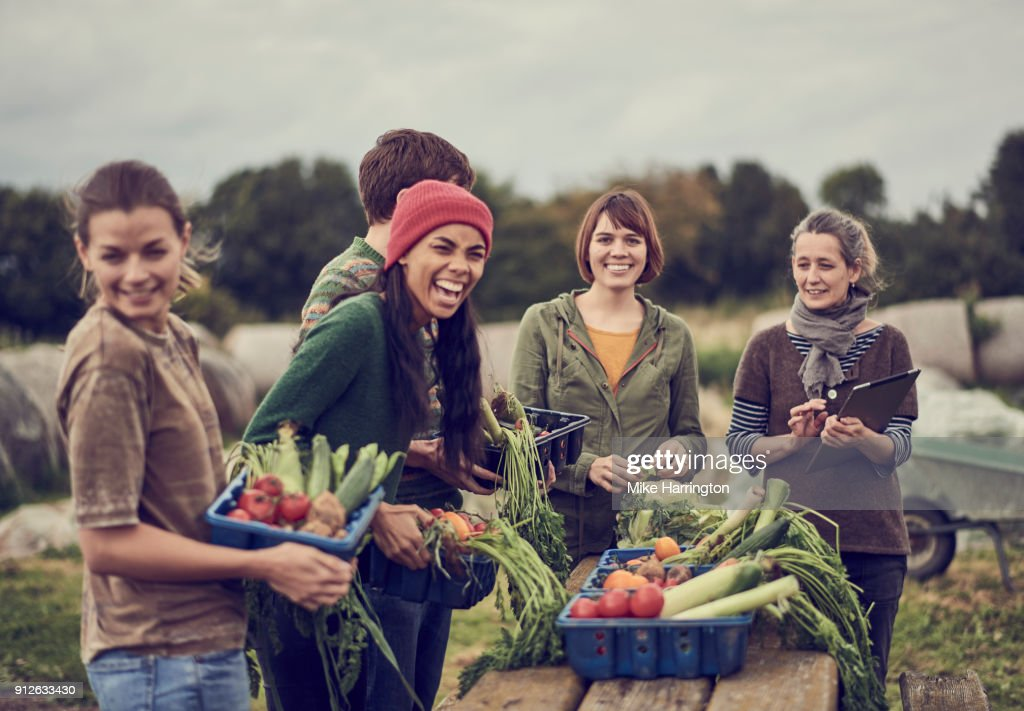 Community farming peers standing together with the allotment produce, laughing : Stock Photo