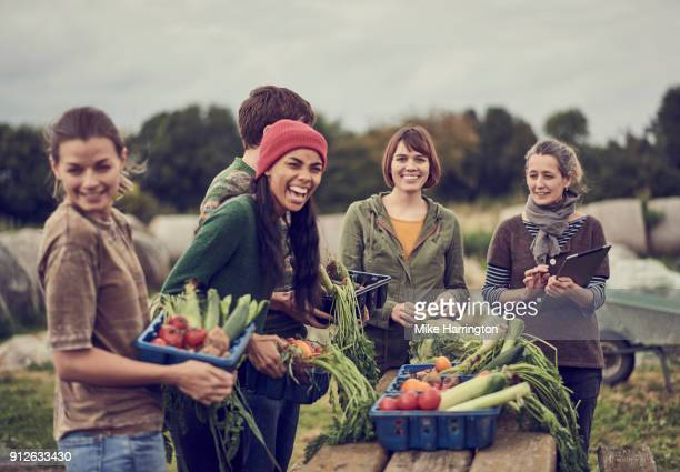 community farming peers standing together with the allotment produce, laughing - organic farm stock pictures, royalty-free photos & images