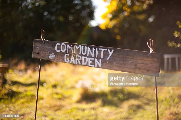 community garden - self sufficiency stock pictures, royalty-free photos & images