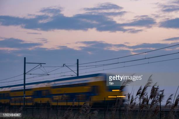 "commuter train of the nederlandse spoorwegen (ns) driving past the oostvaardersplassen during a cold winter evening - ""sjoerd van der wal"" or ""sjo"" nature stock pictures, royalty-free photos & images"