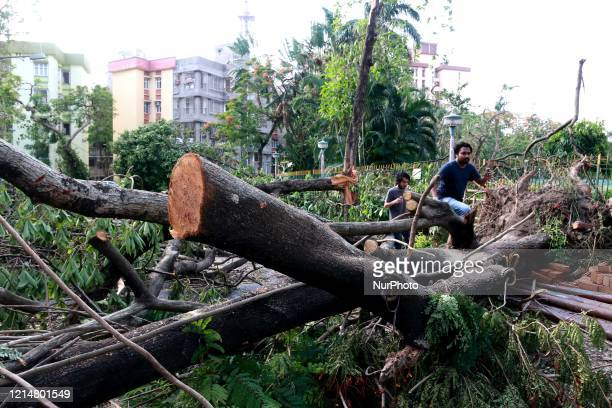 Commuters are seen along a street next to a fallen tree following the landfall of cyclone Amphan in Kolkata on May 23 2020 At least 106 people died...