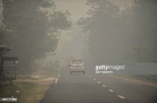 Commuters drive through thick haze in Pulang Pisau Central Kalimantan on October 25 2015 Indonesia has put warships on standby to evacuate people...