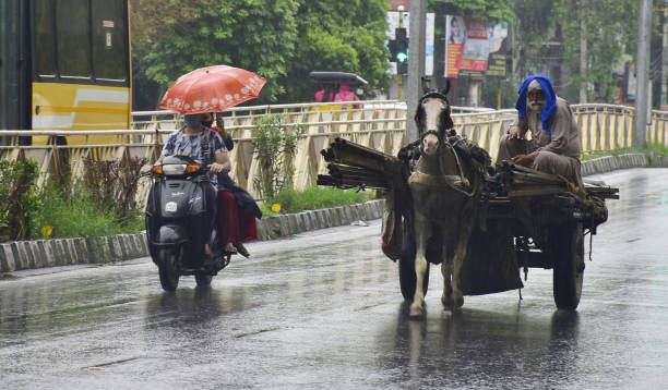 IND: Heavy Rain In Amritsar