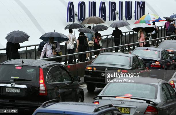 Commuters walk on the edge of an inner city freeway as bus drivers hold a 24hour stoppage on December 18 2009 in Sydney Australia Drivers walked out...