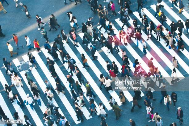 commuters walking at shibuya crossing, tokyo - tokyo japan stockfoto's en -beelden