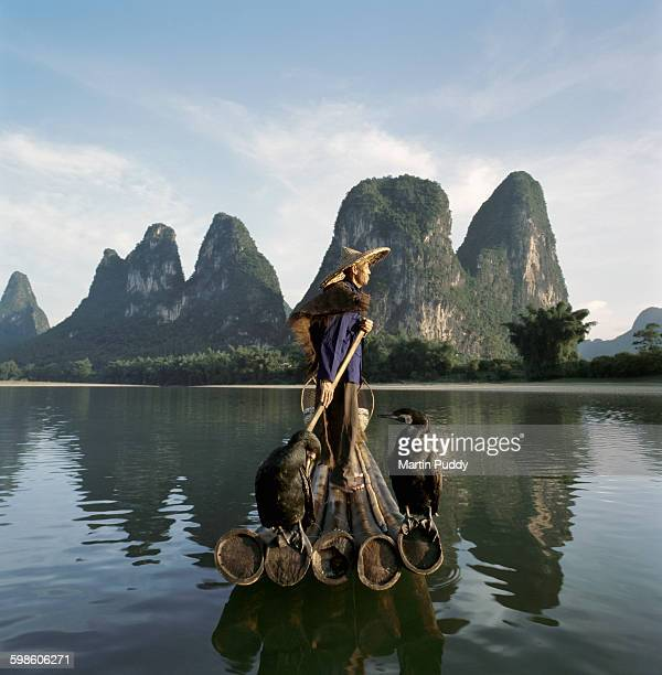 comorant fisherman standing on bamboo raft - tame stock photos and pictures