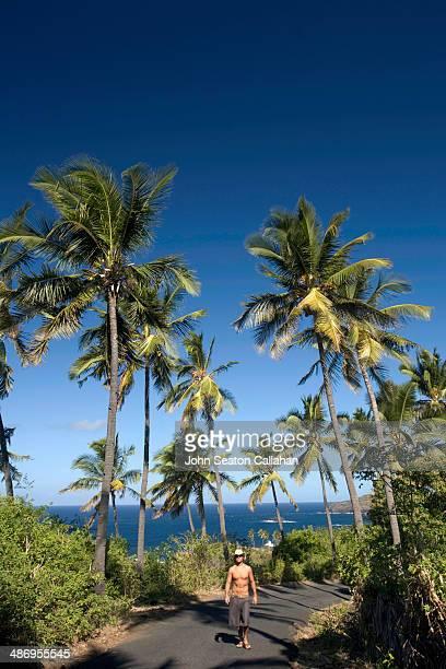 Comoros Anjouan man walking in coconut grove