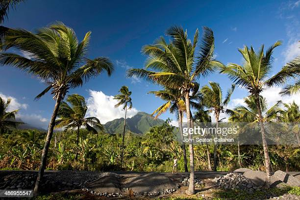 Comoros Anjouan tropical landscape