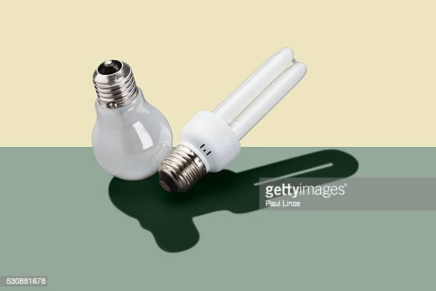 Compact Fluorescent and Light Bulbs
