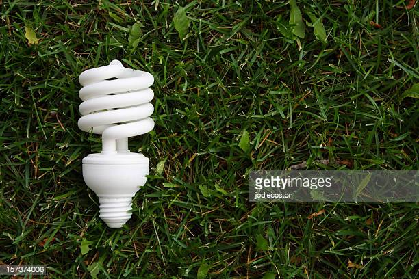 compact fluorescent bulb in grass - energy efficient lightbulb stock photos and pictures