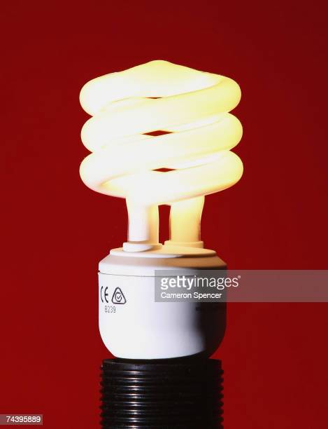 Compact Fluorescent Bulb is seen illuminated June 4 2007 in Sydney Australia The energy efficient bulbs consume up to 75% less energy than a standard...