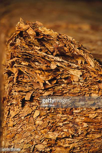 compacted tobacco leaves - crushed leaves stock pictures, royalty-free photos & images