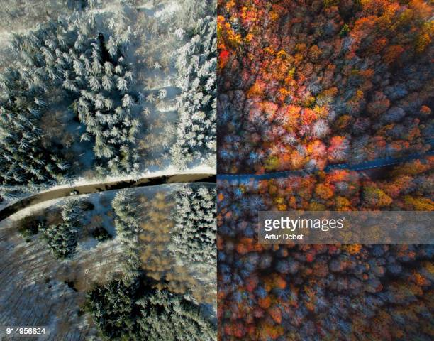 comparison picture taken from drone with half autumn and half winter landscape. - jahreszeit stock-fotos und bilder
