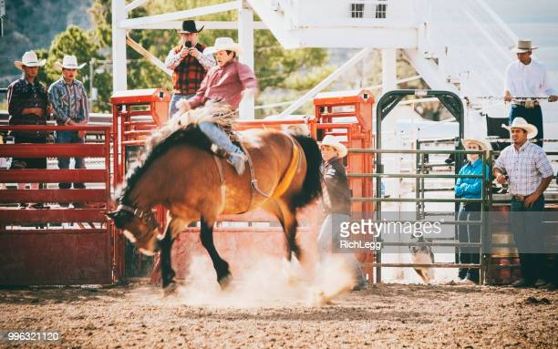 competition rodeo saddle bronc - bronco stadium stock pictures, royalty-free photos & images
