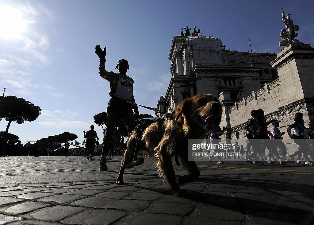 A competitor runs with his dog past the : News Photo