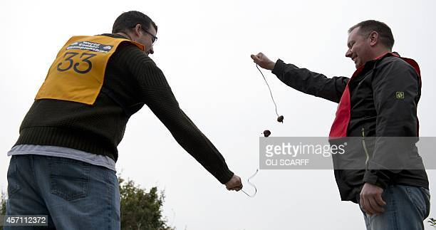 A competitor's conker detaches from its lace as he takes part in a later round of the annual World Conker Championships in Southwick central England...
