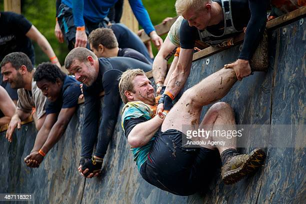Competitors help each other while challenging in Tough Mudder endurance race in HenleyonThames England on 27 April 2014 Competitors run a 19km course...