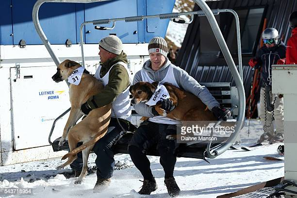 Competitors ride in the chair lift to the start line during the DB Export Dog Derby at the Remarkables ski field on June 30 2016 in Queenstown New...