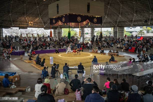 Competitors take part in the 7th International Womens Sumo Invitational Championship on April 14 2019 in Osaka Japan The tournament involves women's...
