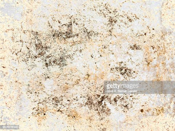 Complete setting of a facade of a cement wall with stones  ancient and spoil in the time. High resolution photography.