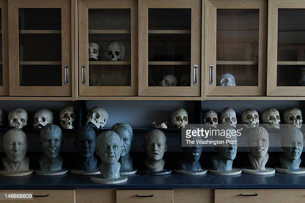 completed Facial Approximations of unidentified found remains sit as Lisa Bailey a forensic artist and Dr Richard Thomas a forensic anthropologist...