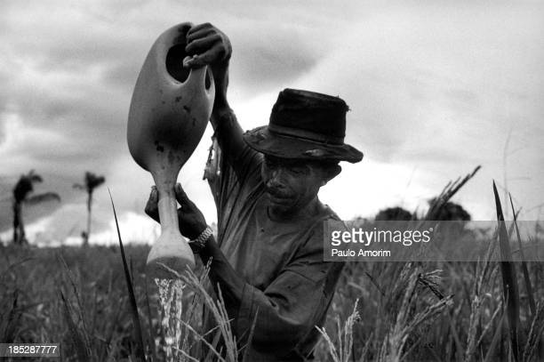 Component of the Landless workers movement on 17 April 1998 working at ranch in transamazonica in Parauapebas south of Pará northern Brazil PHOTO