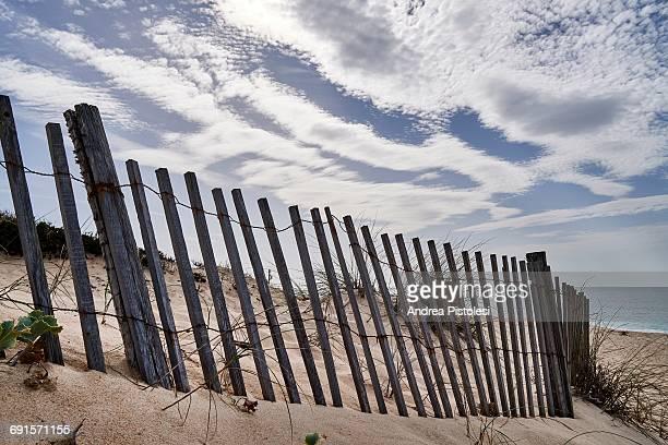 comporta beach, portugal - comporta portugal fotografías e imágenes de stock