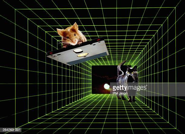 Composite of mouse on computer disc and cat on green grid