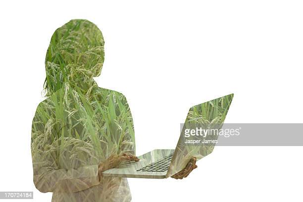 composite of young woman using laptop and grass
