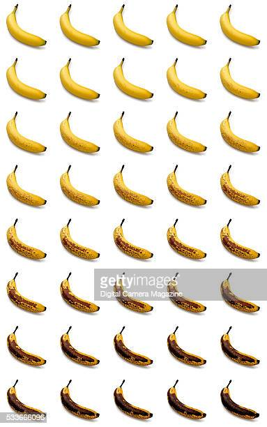 Composite time lapse of a banana ripening, taken on June 25, 2015.