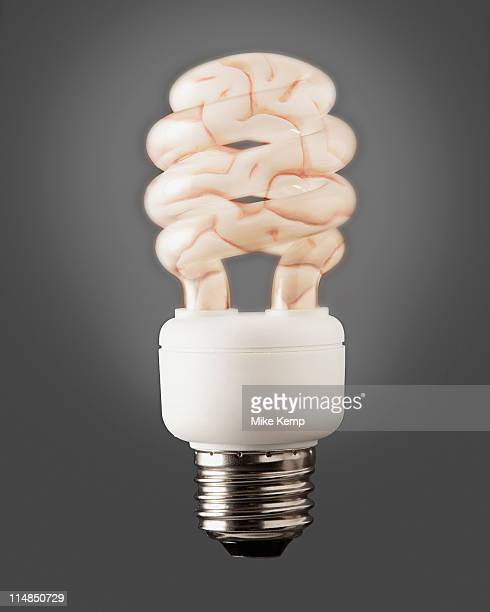 Composition of energy efficient bulb and human brain