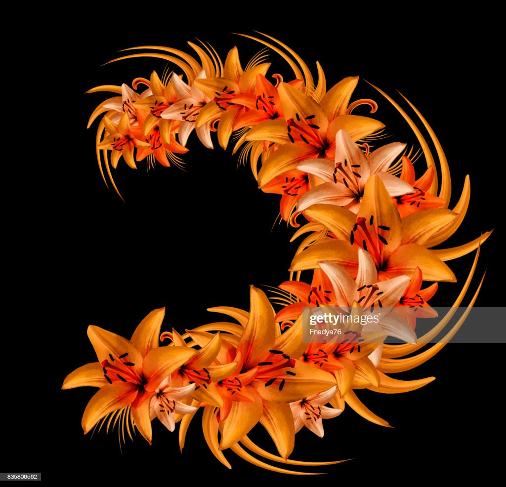 Composition of redorange flowers lilies on the black background composition of red orange flowers lilies on the black background flower arrangement of lilies nature izmirmasajfo