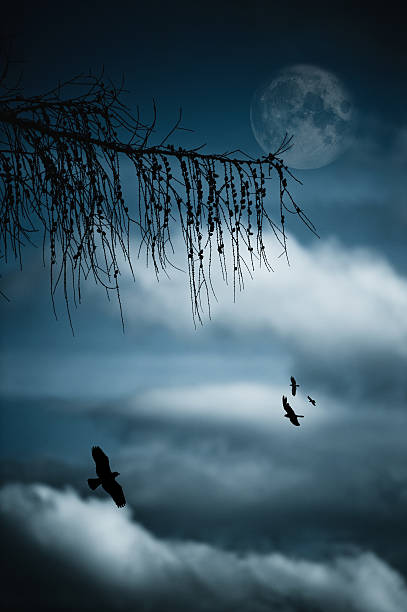 Composition With Tree, Moon, Clouds And Birds Wall Art
