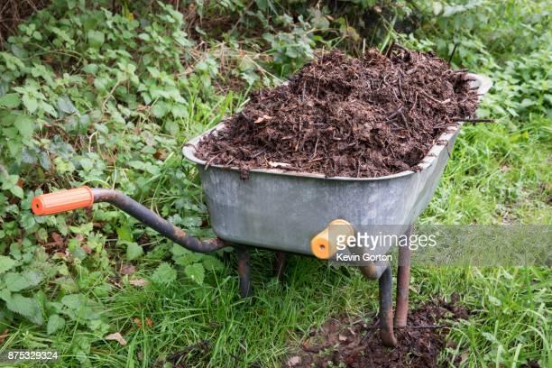 compost in garden wheelbarrow - humus photos et images de collection