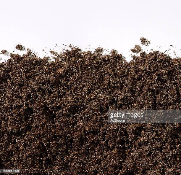 compost - humus photos et images de collection
