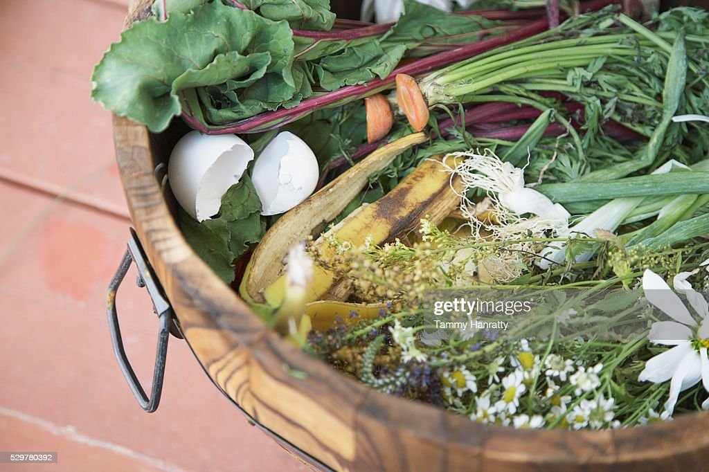 Compost : Foto de stock