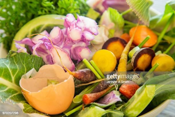 compost - food and drink photos et images de collection