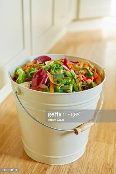 Compost Waste Bin
