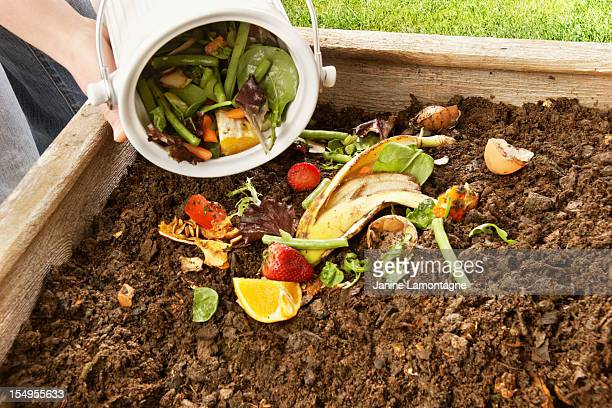 composting - leftovers stock pictures, royalty-free photos & images