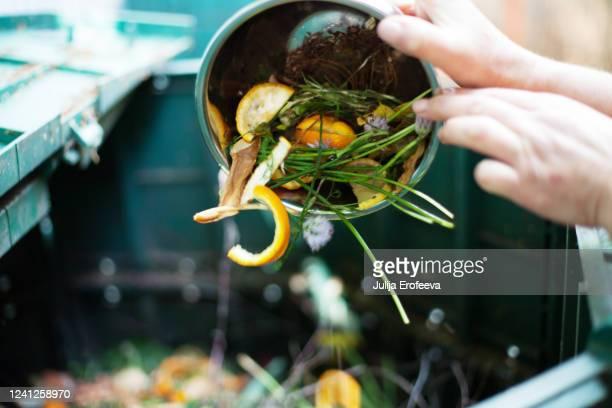 composting & plant care - aliments et boissons photos et images de collection