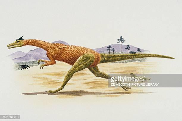 Compsognathus longipes Compsognathidae Late Jurassic Artwork by Mark Stewart