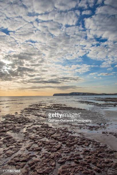 compton beach, isle of wight - compton bay isle of wight stock pictures, royalty-free photos & images
